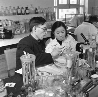 Tu Youyou, junto a Lou Zhicen, en una foto de 1951. Fuente: Wikicommons, fotógrafo desconocido
